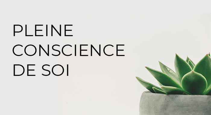 Le-parcours-Zen-Lab-un-ensemble-de-formations-personnalises-pleine-conscience-de-soi